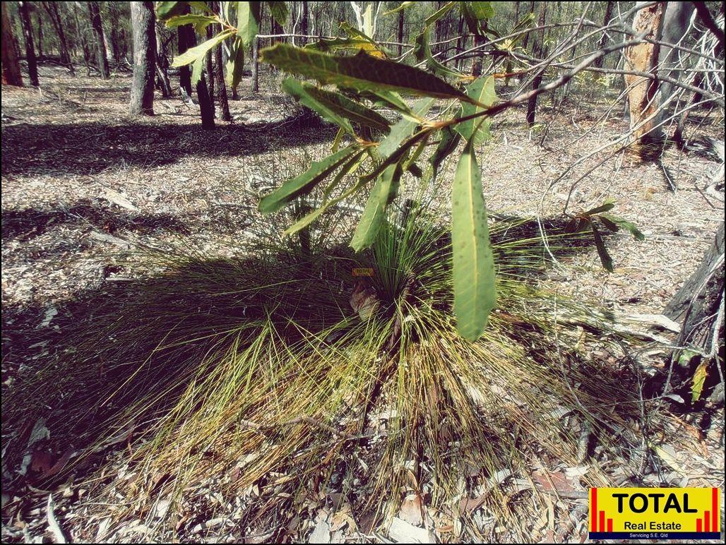 Lot 40 Pine Road, Millmerran Woods QLD 4357, Image 2