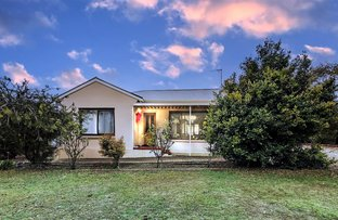 Picture of 59 Dublin Street, Port Lincoln SA 5606