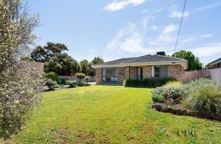 Picture of 3 Yeats Street, Castlemaine VIC 3450