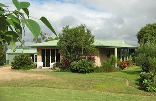 Picture of 195 Jerome, Yungaburra QLD 4884
