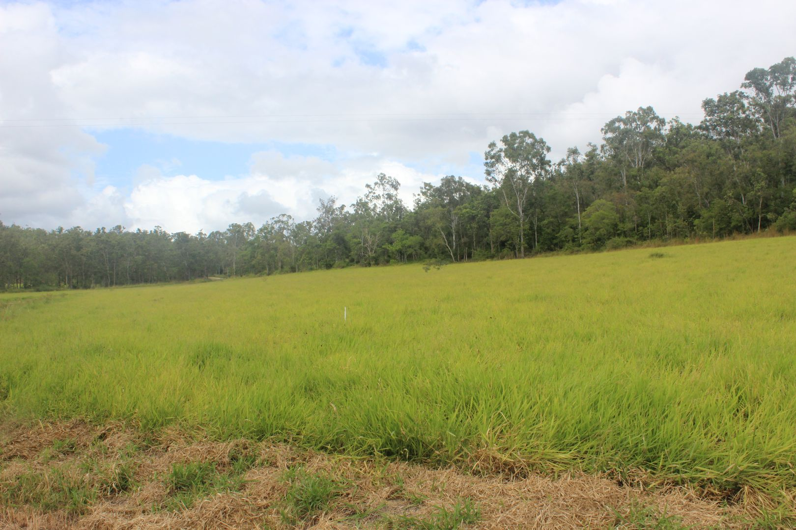 Lots 2 & 2 Paul Burger Road & Johnsons Road, Mount Ossa QLD 4741, Image 2