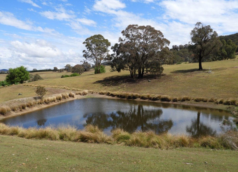 Lot 1 Towrang Road, Towrang NSW 2580, Image 1
