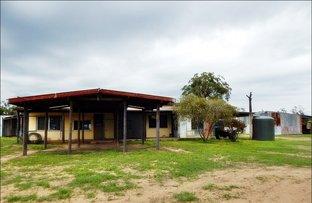 Picture of Cypress Road, Kumbarilla QLD 4405