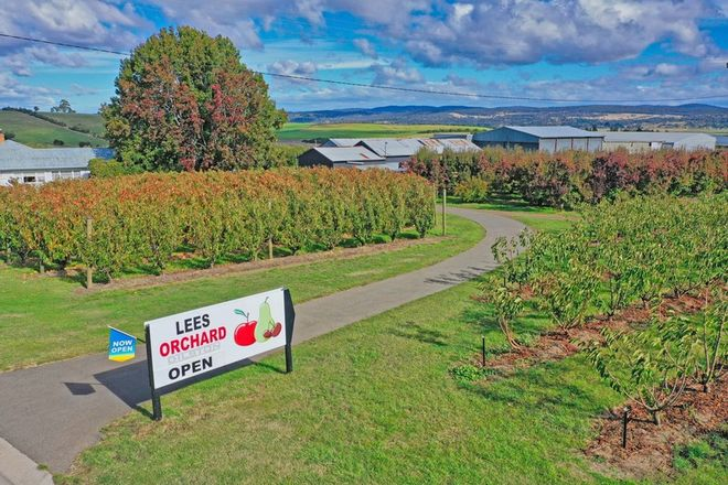 Picture of 161 John Lees Drive, DILSTON TAS 7252