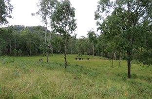 Picture of 30 Carrai Road, Willi Willi NSW 2440