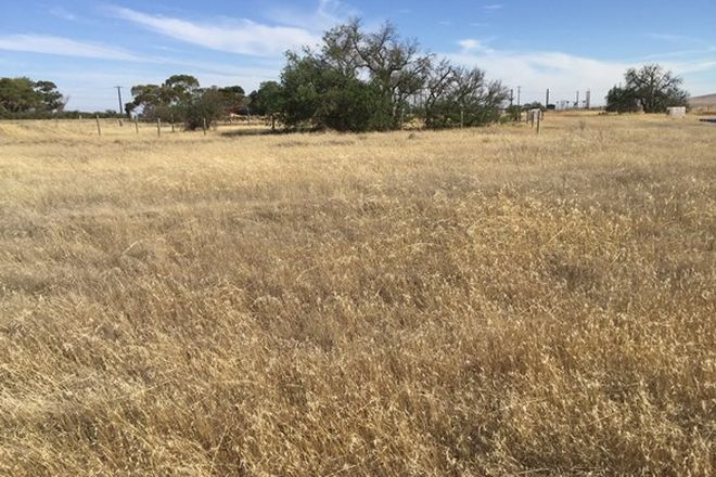 Picture of Lot 18/19 Josephs Street (Agnes Road), COLLINSFIELD SA 5555