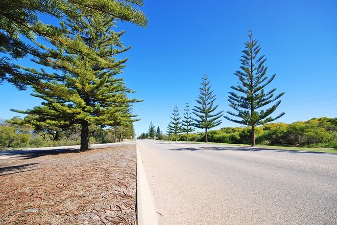 Picture of Lot 1038, 29 Bremer Parade, JURIEN BAY WA 6516