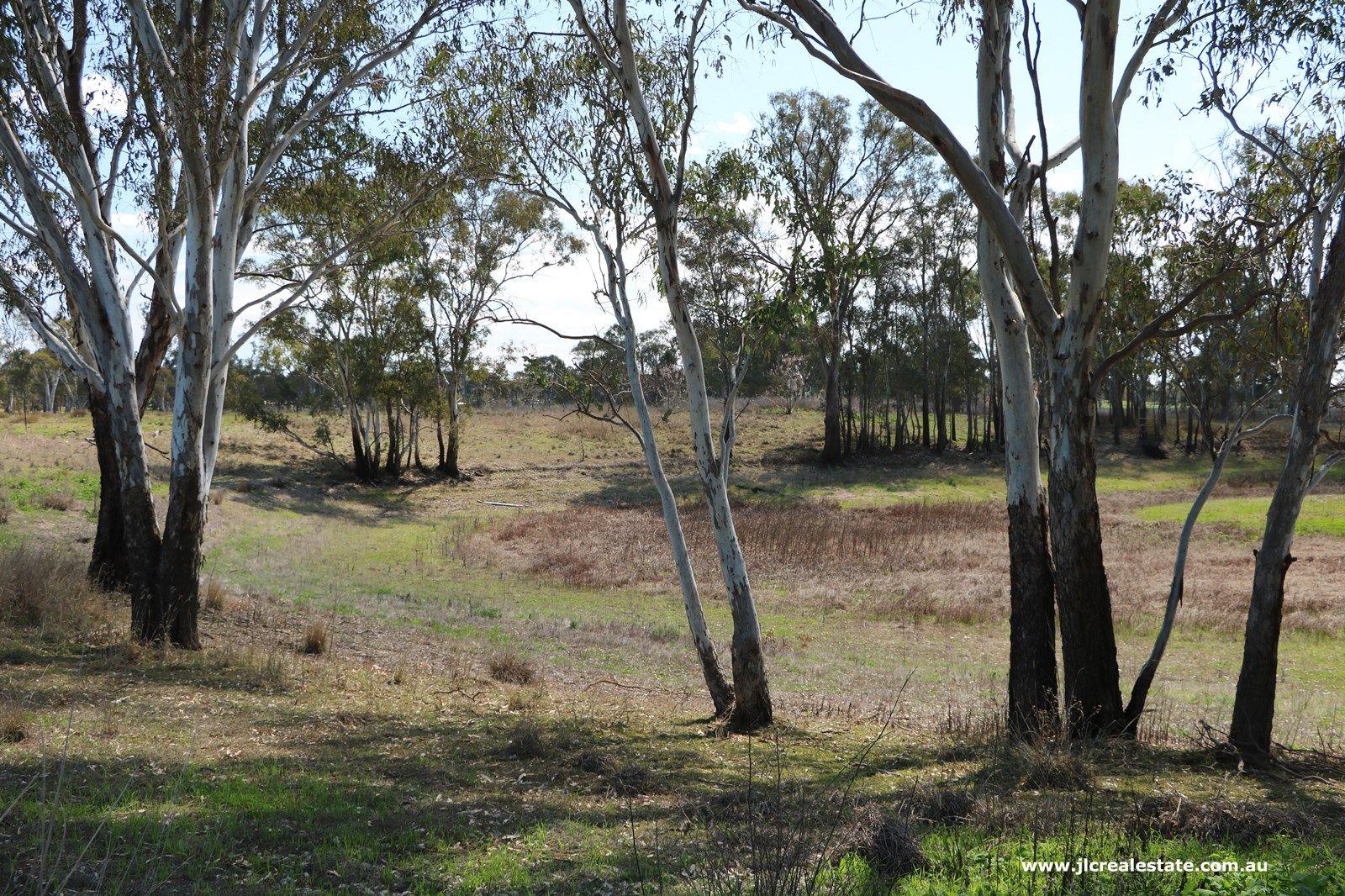 Lot 3 Seibel Lane, Pratten QLD 4370, Image 2
