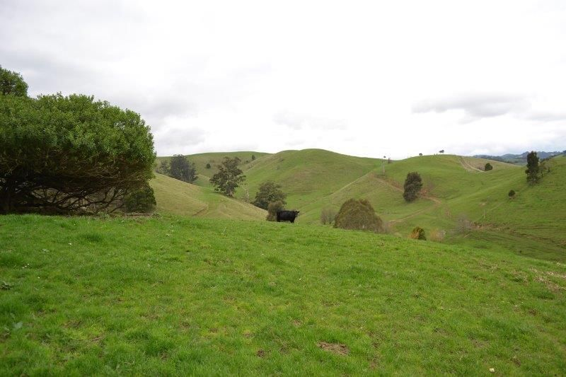 90 Grand Ridge Rd, Seaview VIC 3821, Image 1