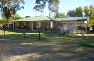 Picture of 4639 Olympic Highway, Young NSW 2594