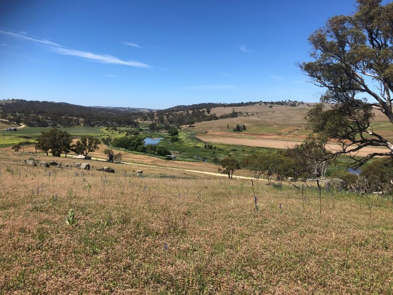 801 Ironmungie Rd, Bungarby NSW 2630, Image 0