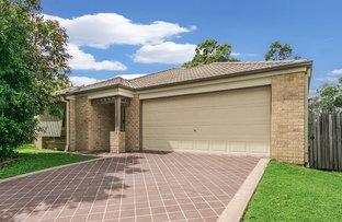Picture of 14 Glentree Avenue, Upper Coomera QLD 4209