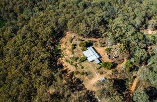 Picture of Aurarose Old Taradale Rd, Rosewood NSW 2652