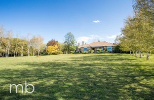 Picture of 155 Wallace Lane, Orange NSW 2800