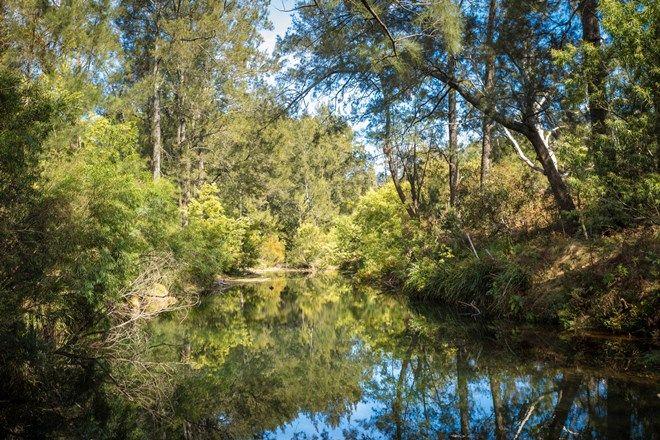 Picture of 120 Dignams Creek Rd, DIGNAMS CREEK NSW 2546
