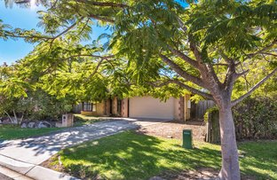 Picture of 84 Sugarwood Street, Bellbowrie QLD 4070