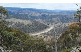 Picture of 1420 Bundalah Road, Euchareena NSW 2866