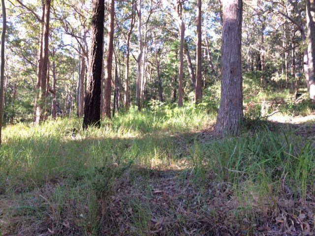 22/27 The Lakes Way, Tarbuck Bay NSW 2428, Image 2