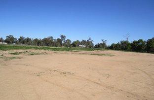 Picture of Lot 12 Carinda Road, Warren NSW 2824