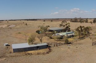 Picture of 2006 Nuable Road, Narrabri NSW 2390