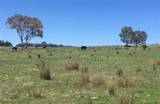 Picture of Lot 15/703 Bonds Road, Mudgee NSW 2850