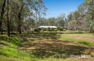 Picture of Maraylya NSW 2765