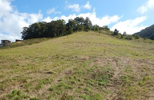 Picture of Lot 71 Old Coast Road, Korora NSW 2450