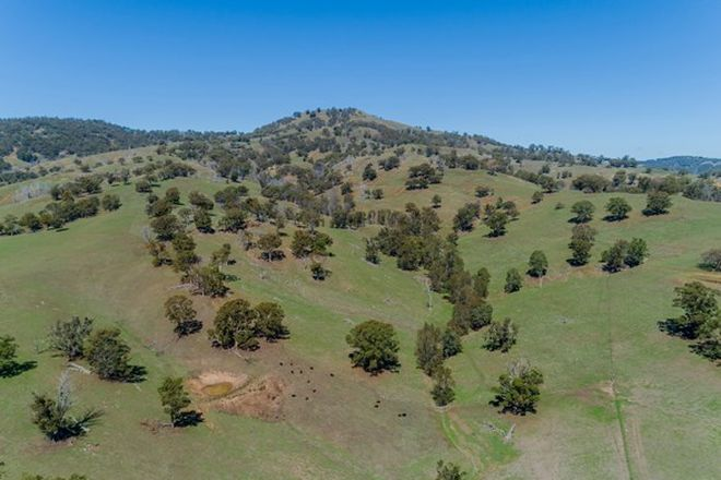 "Picture of ""Rockley"", MURRURUNDI NSW 2338"