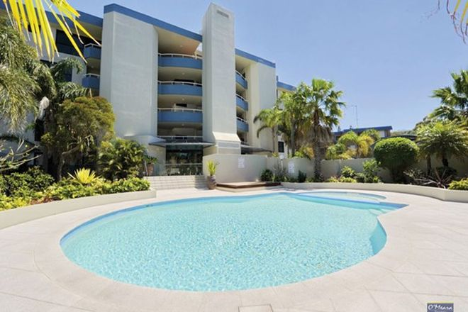 Picture of 3/11 Columbia Close, NELSON BAY NSW 2315