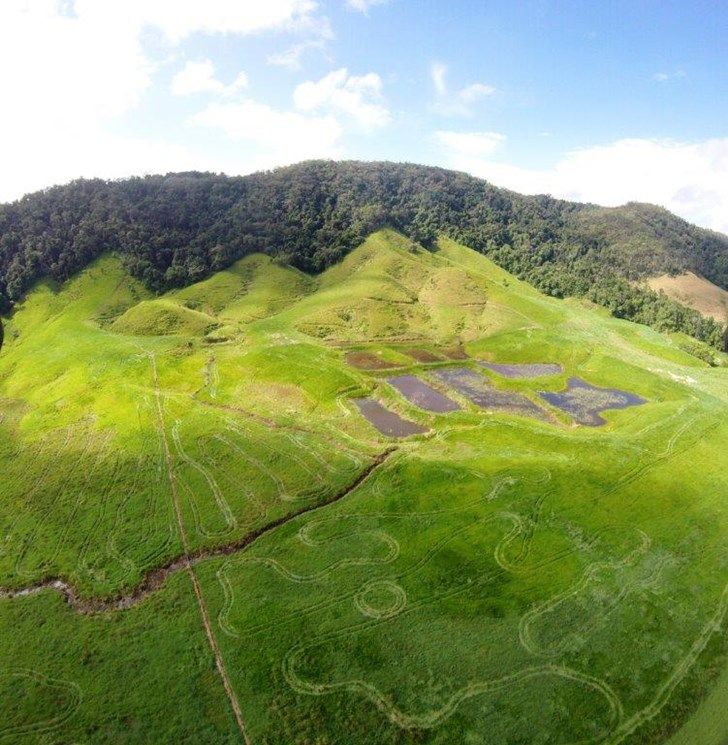 Lot  2 Stewart Creek Road (Stewart Creek Valley), Daintree QLD 4873, Image 0