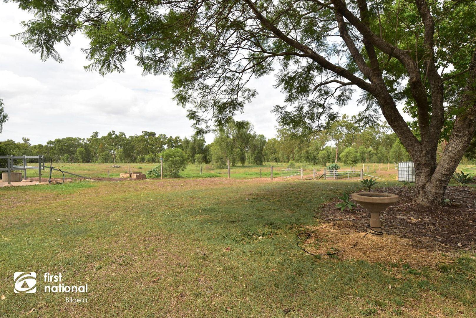 124 Linkes Road, Biloela QLD 4715, Image 2