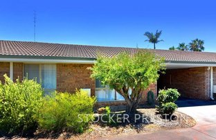 Picture of 5/38 Preston Street, East Bunbury WA 6230