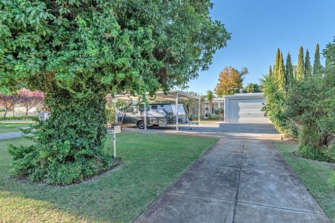 Picture of 46 Elstree Avenue, COOLBINIA WA 6050