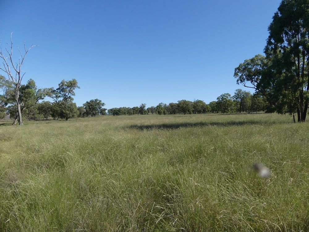 """Hilldale"" Warrah Ridge Rd, Quirindi NSW 2343, Image 0"