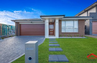 Picture of 53  Fanflower Ave (Willowdale), Denham Court NSW 2565
