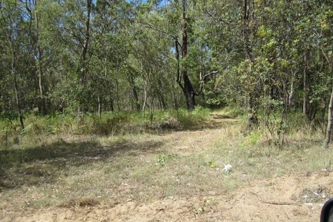 Picture of 434 Seery Road, KIPPENDUFF NSW 2469