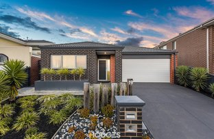 19 Maeve Circuit, Clyde North VIC 3978