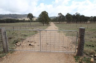 Picture of 330 Mount Mackenzie Road, Tenterfield NSW 2372