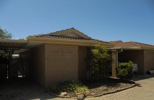 Picture of 6/17 Casilda Place, Cooloongup WA 6168