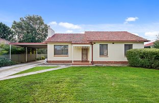 Picture of 5 Grantley Avenue, Daw Park SA 5041