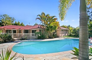 Picture of 53 Coolah Place, Cooroibah QLD 4565