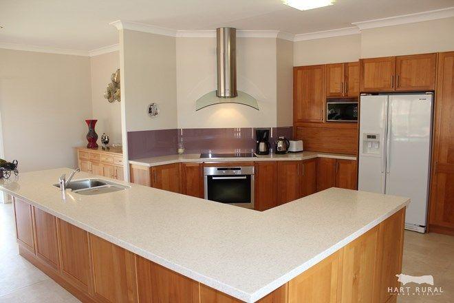 Picture of 'Ben Downs' 133 Langworthys Lane, MANILLA NSW 2346