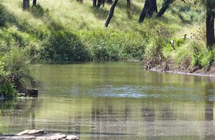Picture of . 'Warrong', Injune QLD 4454