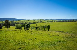 Picture of Lot 123 'Foster Paddock' Princes Hwy, Bega NSW 2550