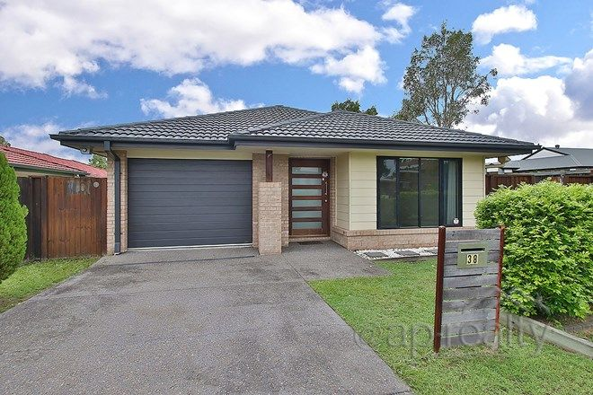 Picture of 38 Juniper Street, HEATHWOOD QLD 4110