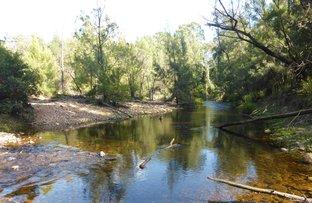 Picture of 1748 Quart Pot Road, Buckenbowra NSW 2536