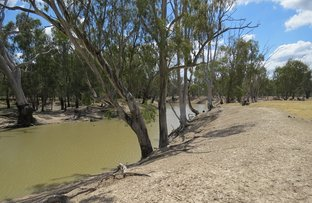 Picture of 1063 Gonn Road, Barham NSW 2732