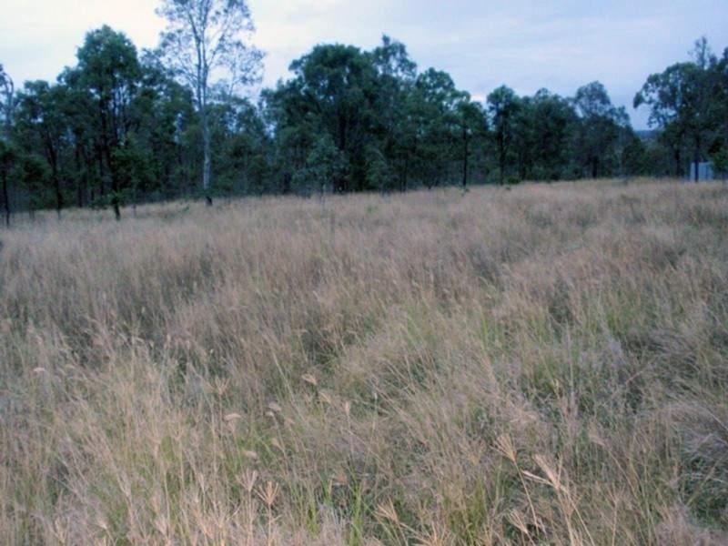 Runnymede QLD 4615, Image 2