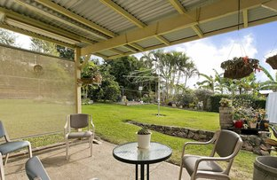 Picture of 67 Ringrose Street, Stafford Heights QLD 4053