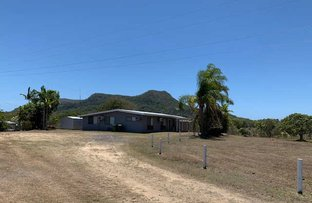 Picture of 591 CAPE HILLSBOROUGH ROAD, Cape Hillsborough QLD 4740